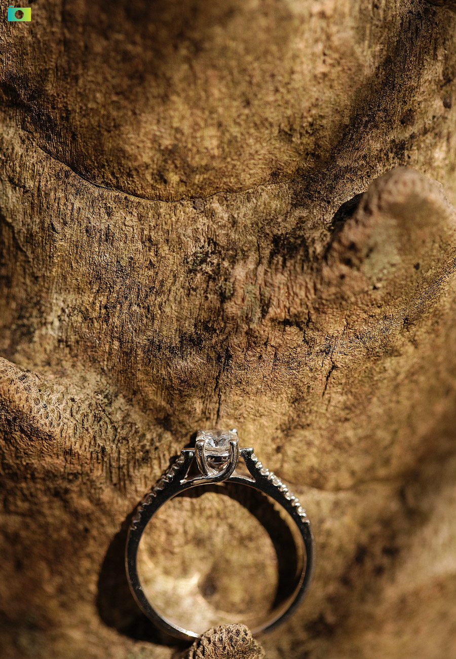 Ring Portraits by Jayson and Joanne Arquiza Photography
